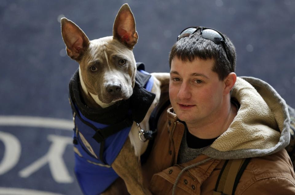 http://news.yahoo.com/rescued-pit-bulls-fight-stigma-guiding-people-174449009.html