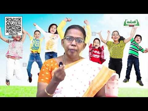 11th Nutrition உணவூட்டவியல் - ஓர் அறிமுகம் அலகு 1 பகுதி 1 TM  Kalvi TV