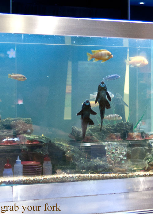 Aquarium at Umi Kaiten-Zushi