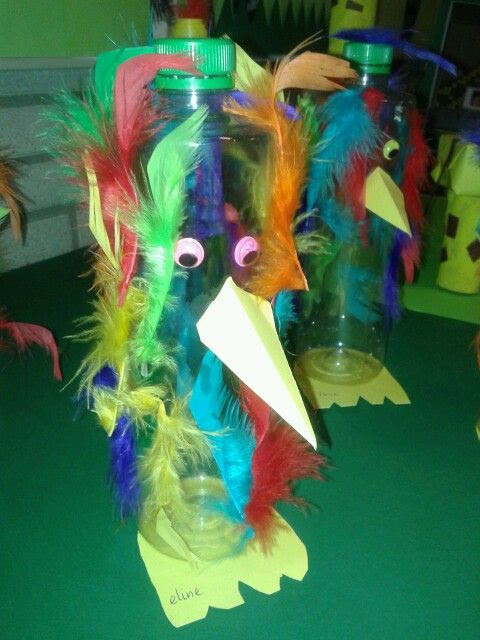 Petfles vogel