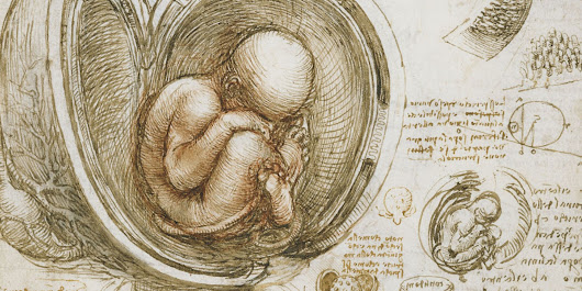 Health Begins Before Birth: The Womb As The Cradle of Life