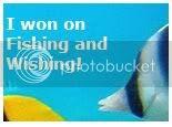 Fishing and Wishing