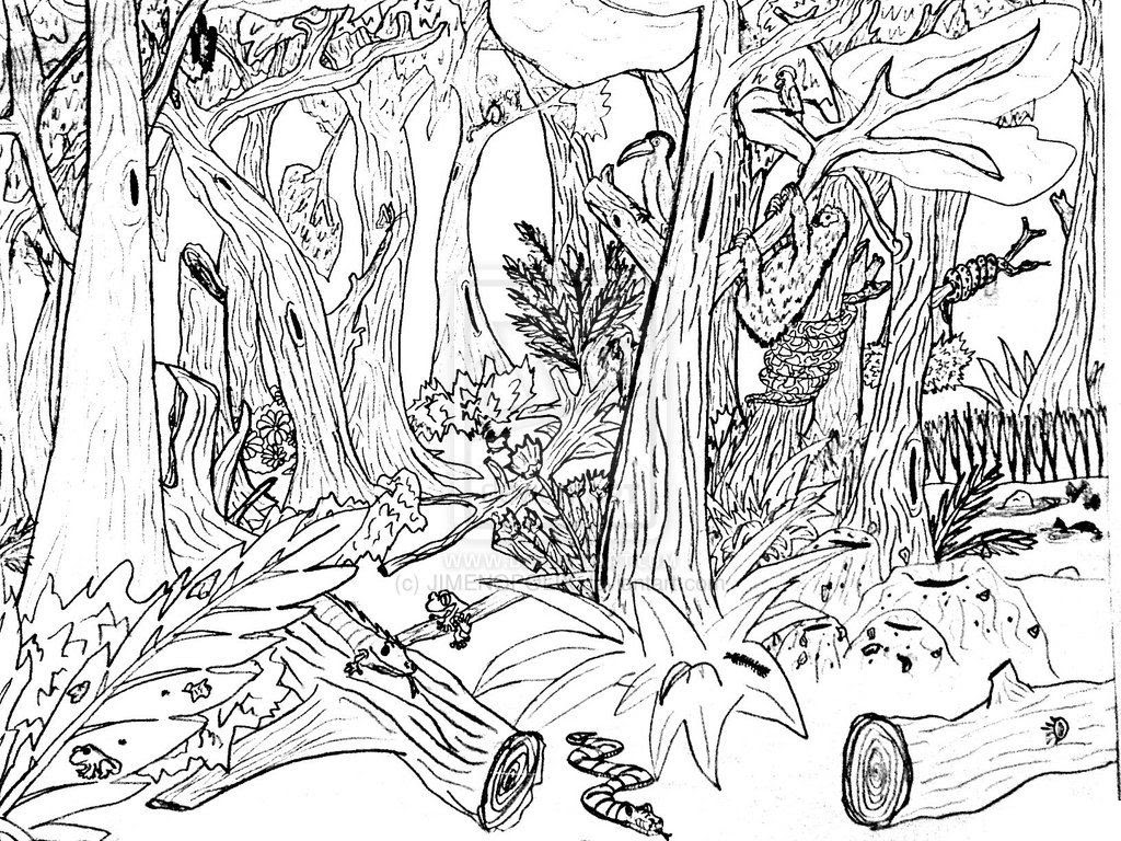 Adult Coloring Pages Nature at GetDrawings | Free download