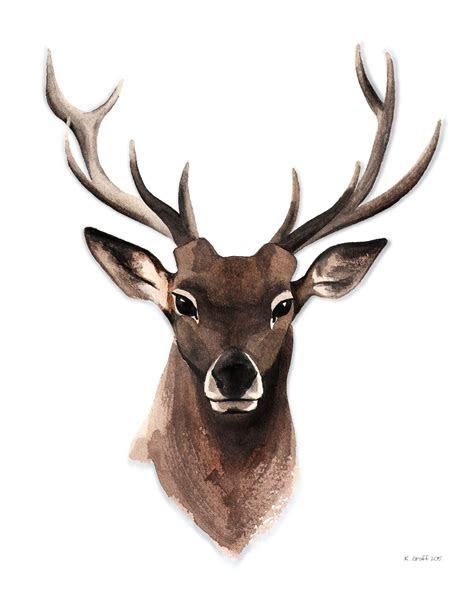 pin  brenda  tats   watercolor deer deer