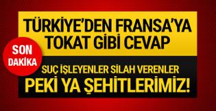 Türkiye'den Fransa'ya Zeytin Dalı tepkisi