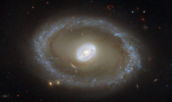 Hubble Space Telescope picture of galaxy NGC 3081. Credit: ESA/Hubble & NASA; acknowledgement: R. Buta (University of Alabama)