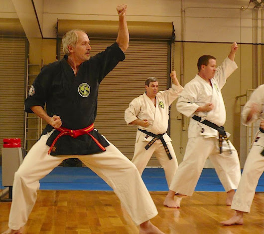 Mesa Arizona Martial Arts Instructor Selected as Professor