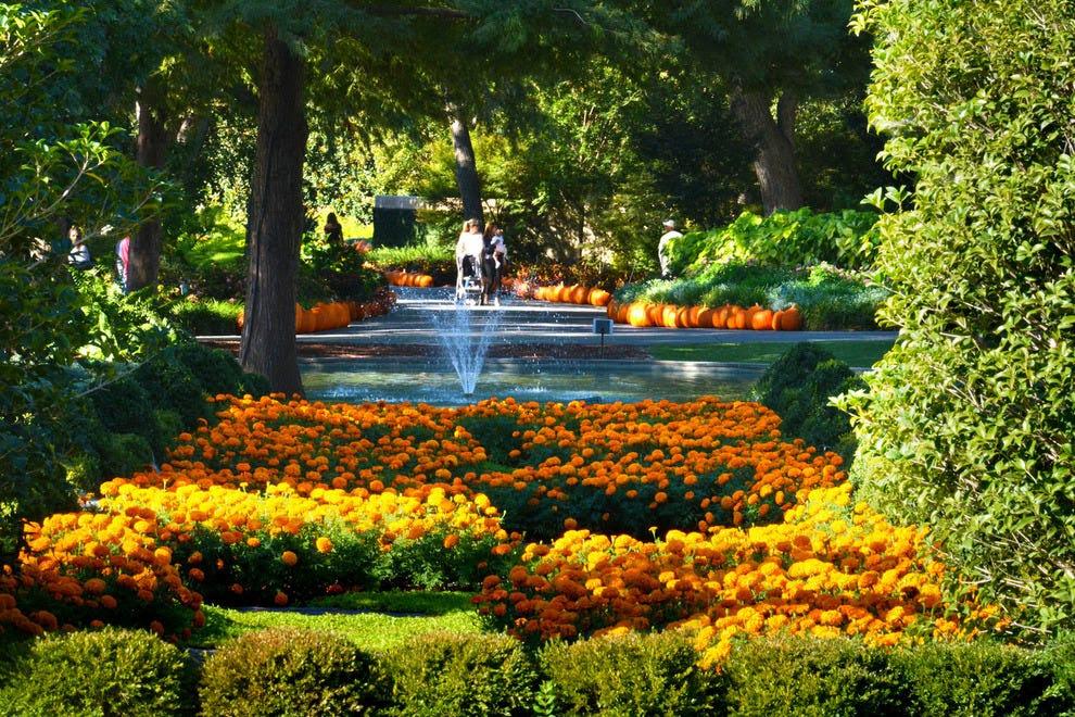 Find Hotels Near Dallas Arboretum And Botanical Garden