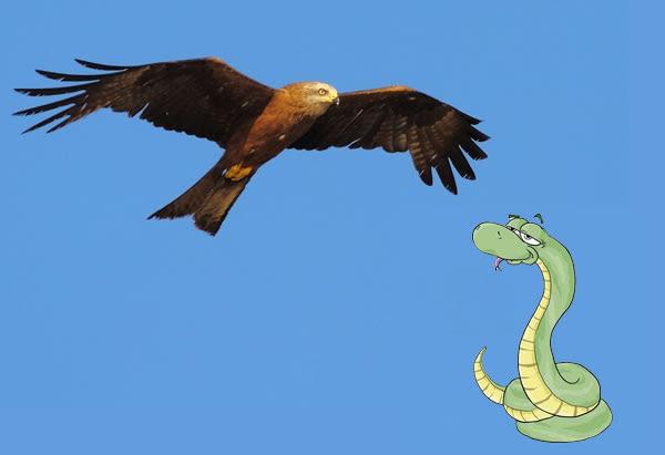 Resultado de imagen de Como el águila y la serpiente