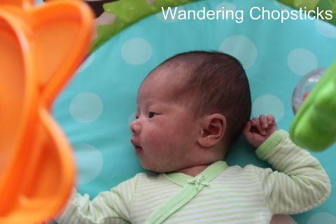 Ask Wandering Chopsticks 7