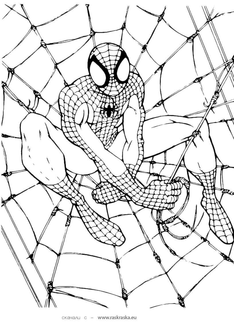 Spiderman Coloring Pages - Kidsuki