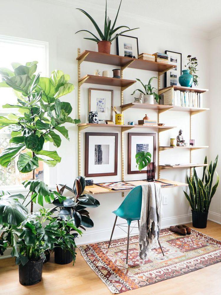 photo 26-decorar-plantas-ideas-verde-casa-decoracion-vegetacion_zpslw7zgtci.jpg
