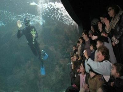 Ηράκλειο : Θεοφάνεια κάτω από το νερό από τον Αρχιεπίσκοπο Κρήτης