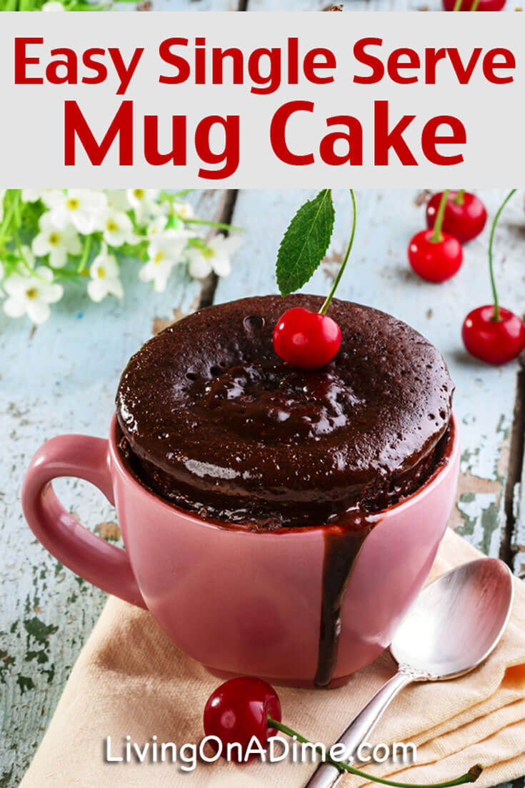 Quick and Easy Single Serve Mug Cake Recipe - Living on a Dime