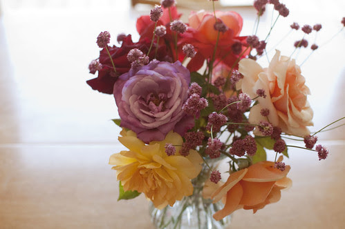 garden roses + natives