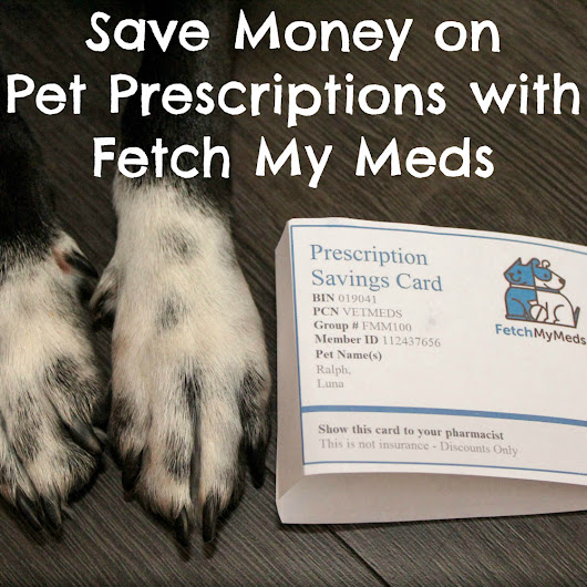 Save Money on Pet Prescriptions with Fetch My Meds