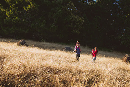Family Photography on Mount Tamalpais Pantoll Trail with Mill Valley Photographer Anise LeAnn