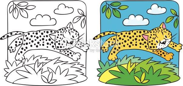 Little Cheetah O Jaguar Libro Para Colorear Arte Vectorial Thinkstock