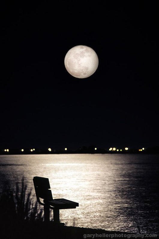 And No One Was There, Empty Bench, Full Moon over the Bay, Film, Thought Provoking, Peace, Tranquili