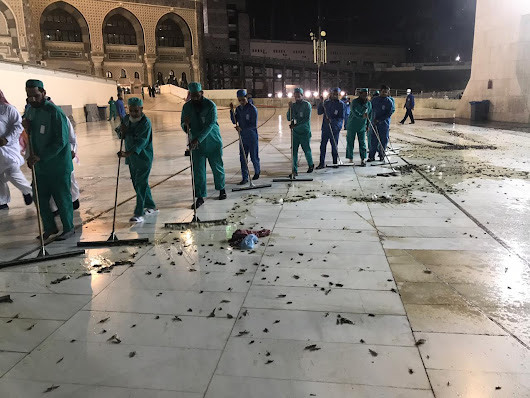 Millions of Black Cricket swarms Makkah - Islam Hashtag