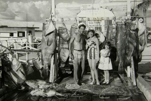 Cincuenta años de peces menguantes en Florida