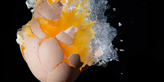 Salmonella Outbreak Scare Triggers Recall of 206 Million Eggs in the United States