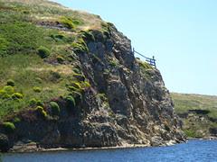 Abbotts Lagoon (Point Reyes)