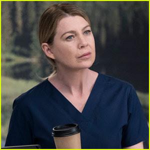 Ellen Pompeo Describes 'Grey's Anatomy' Season Finale in Two Words