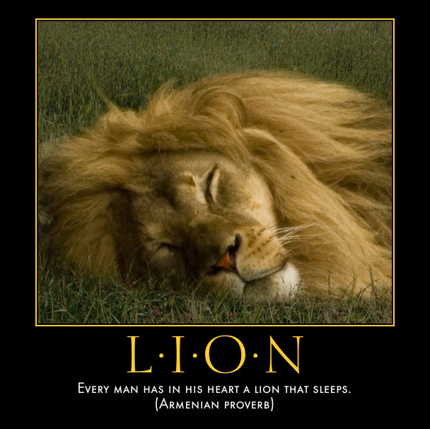 Go Proverbs Proverb Laboratory Poster Lion That Sleeps