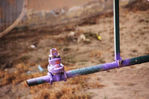 purple pipe_sm