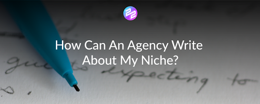 How Can An Agency Write About My Niche?