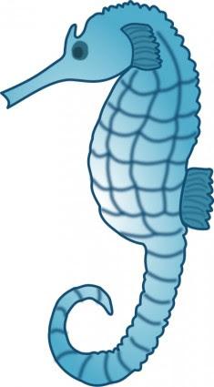 460 Gambar Hewan Kuda Laut Kartun Gratis Terbaik