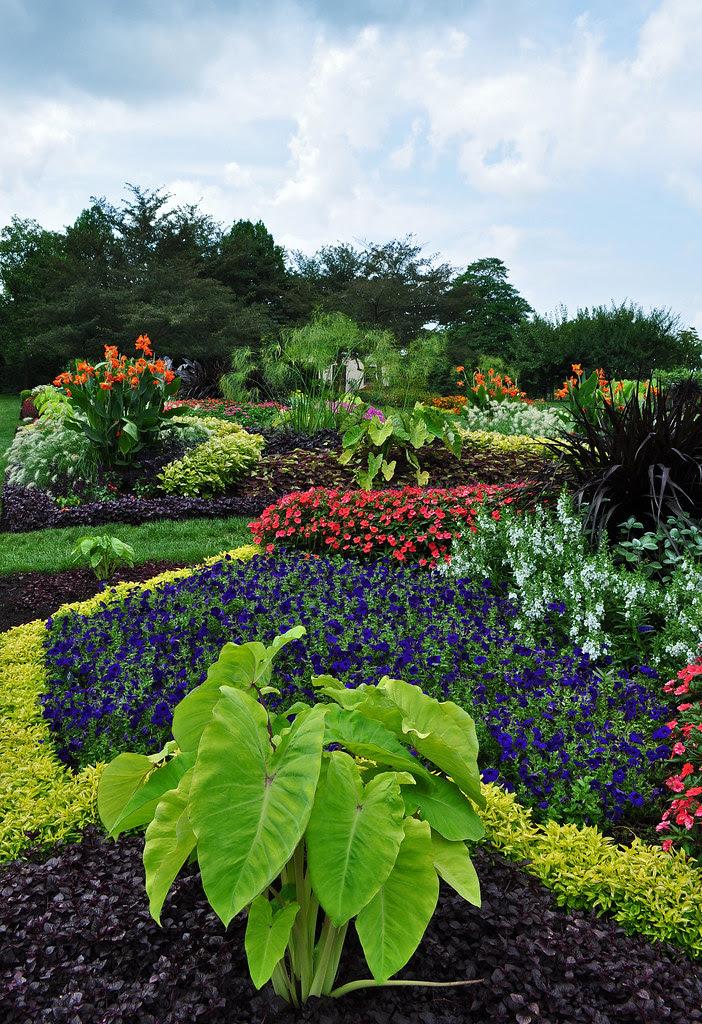 Idea Garden (1)