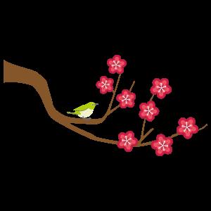 梅の枝の無料イラスト7 花植物イラスト Flode Illustration フロデ