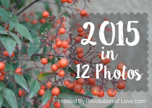 RevolutionofLove.com - 2015 in 12 Photos // logo_end_year_2015A3