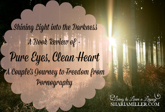 Shining Light into the Darkness - A Book Review of Pure Eyes, Clean Heart - A Couple's Journey to Freedom from Pornography - Shari A. Miller