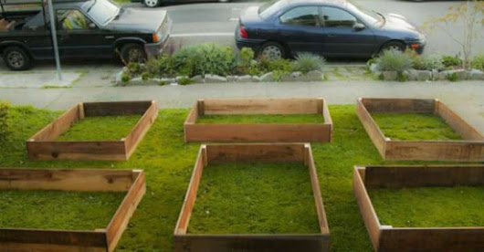 Man Started With Some Boxes. 60 Days Later, The Neighbors Could Not Believe What He Built