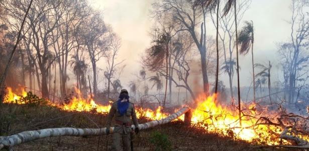 Homem participa de combate ao incêndio florestal no Maranhão