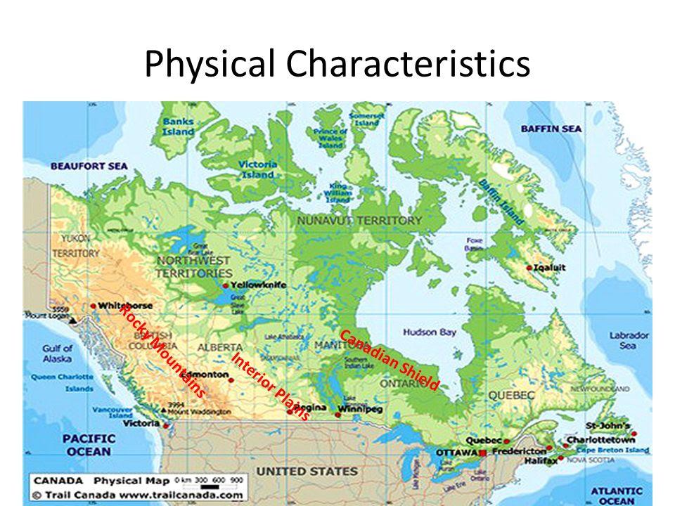 Physical+Characteristics
