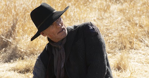 WESTWORLD  Are there any fans here on the +? I've binge watched both seasons this weekend, and I've ...