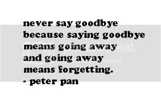 Never Say Goodbye Quotes More Information