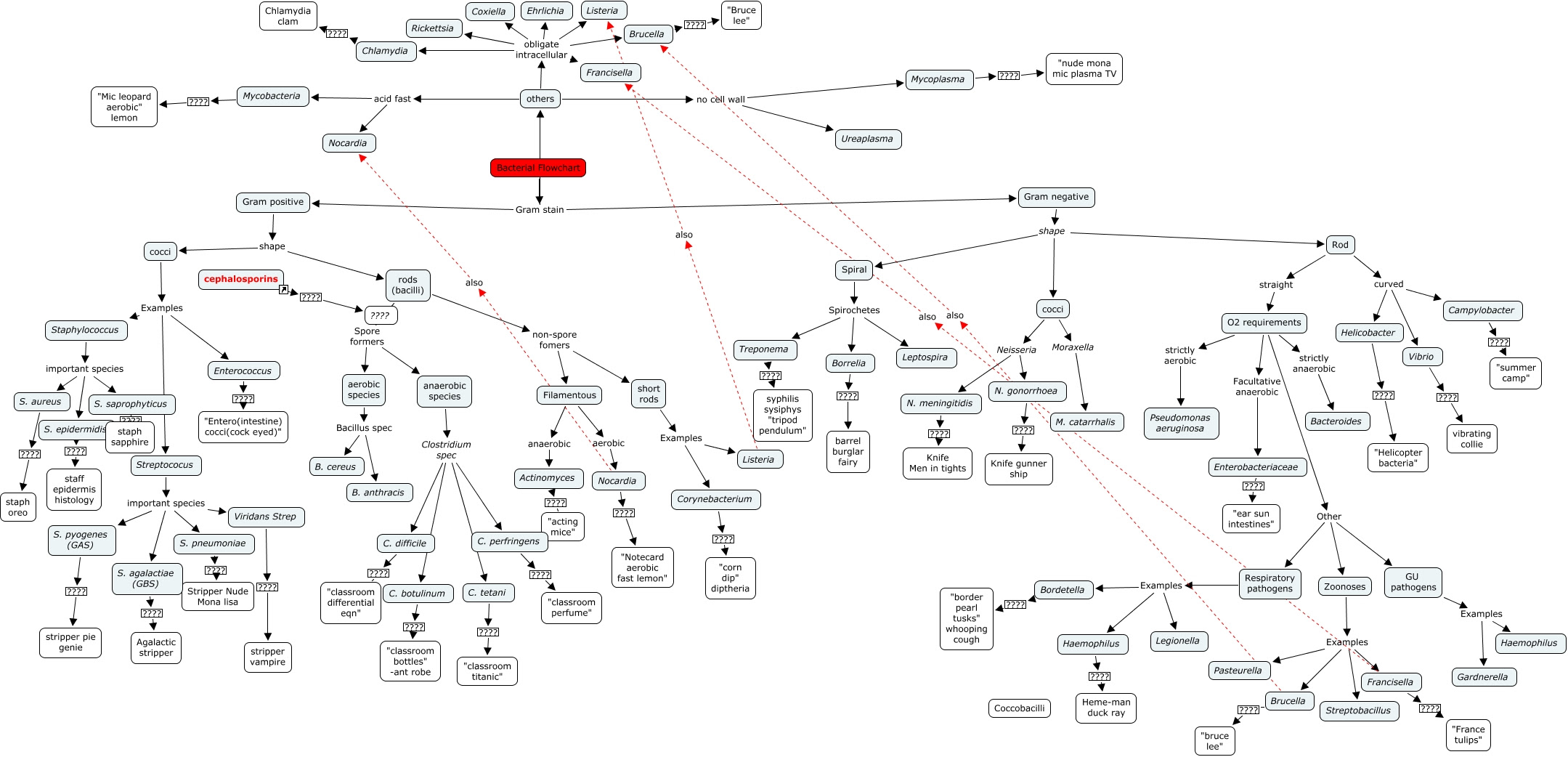 Image Result For Microbiology Concept Map