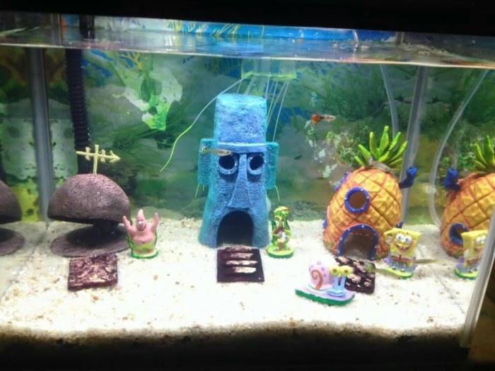 21 Hiasan Rumah Aquarium Inspirasi Top