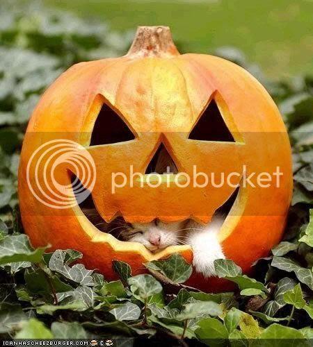 photo halloween2.jpg