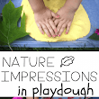 Nature Impressions in Playdough - I Can Teach My Child!