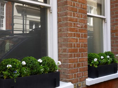 Urban Chic window boxes white green