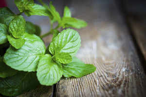 Try the magic of peppermint for health