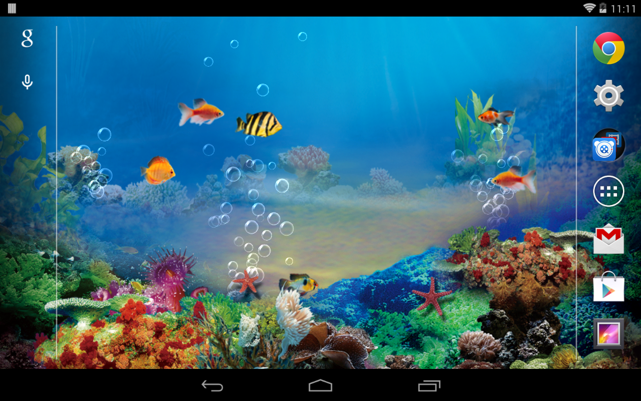 Free Aquarium Wallpaper SF Wallpaper