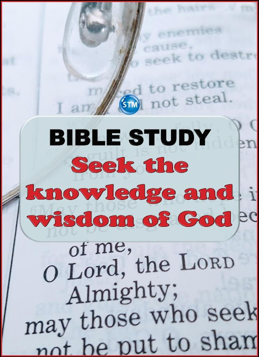 Bible Study Collection