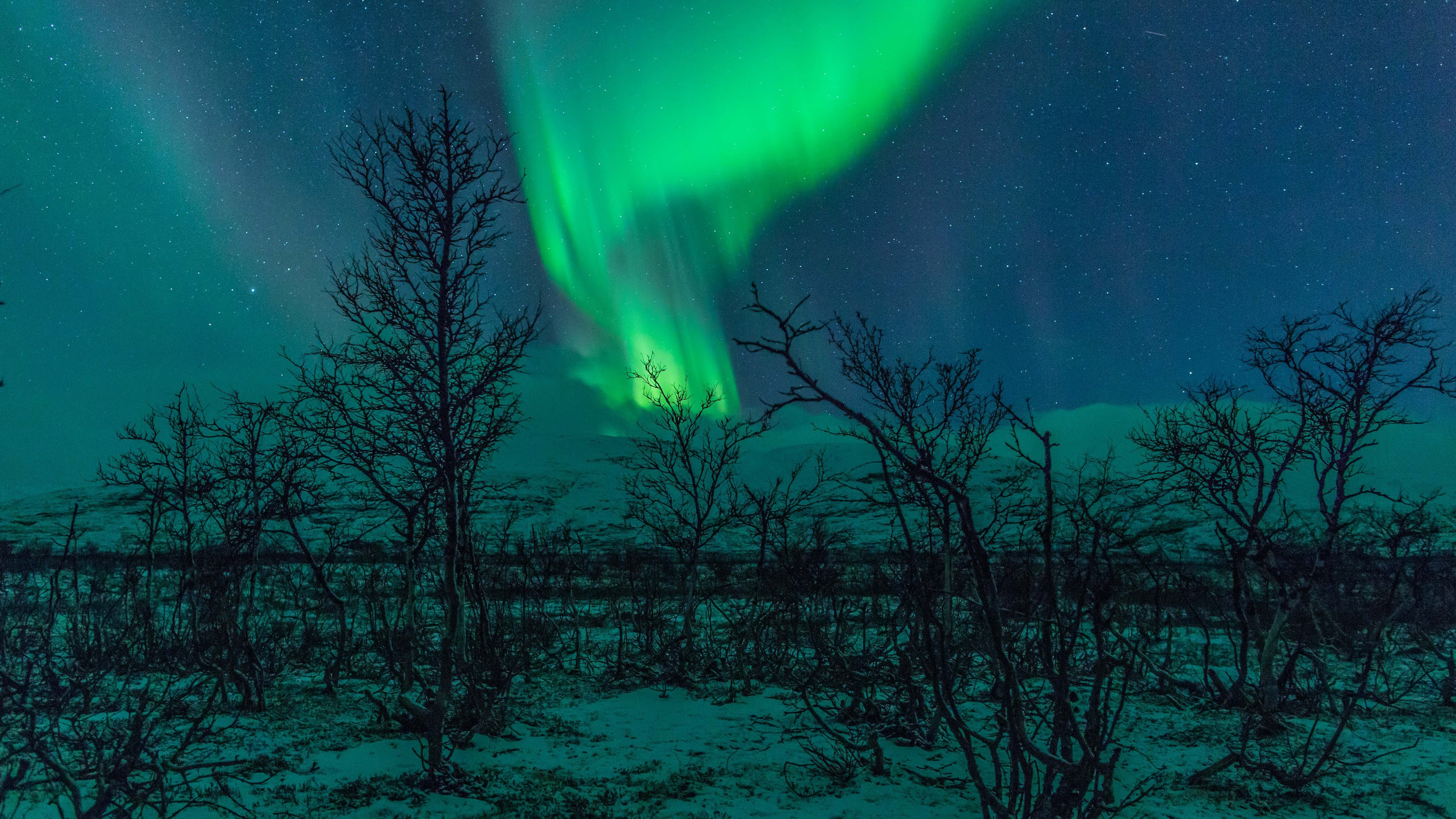 Northern Lights Wallpapers High Quality | Download Free